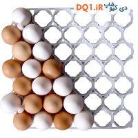 شانه 42 عددی تخم مرغ