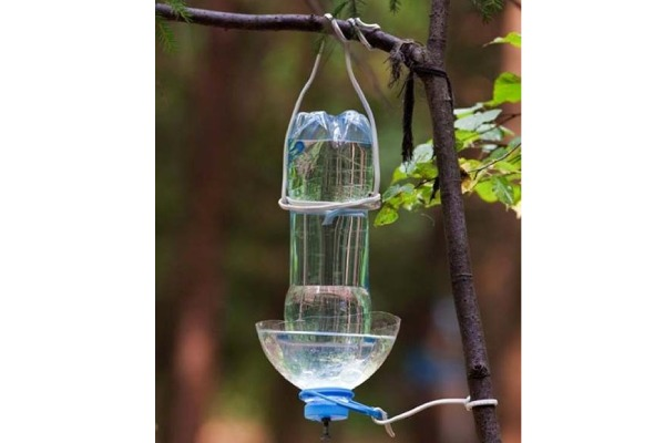 ساختن آبخوری پرنده در خانه